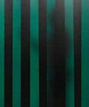 Cepro Green-9 Schw.Lamellen 300x2mm